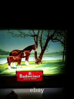Rare Vintage Budweiser Beer Advertising Lighted Electric Sign Clydesdale 1950's